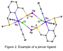 Figure 2. Example of a pincer ligand